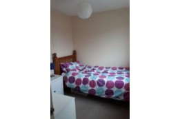 Image of room for rent in house share Alton, Hants. GU34